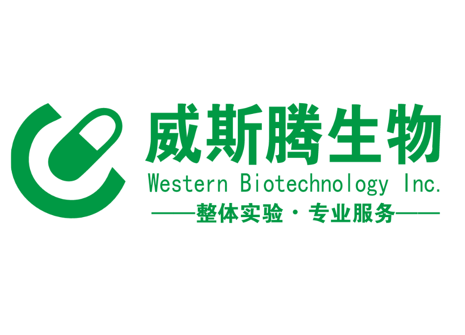 WST-LOGO-M.PNG