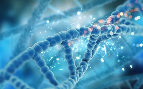 """夸大""""算命""""功能有损基因检测行业未来"""